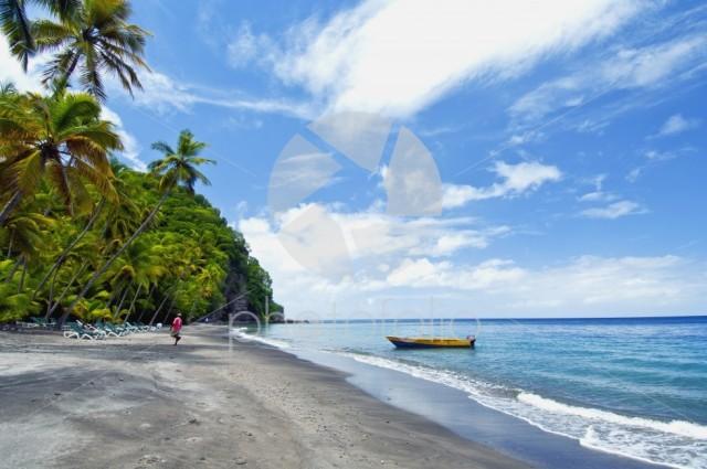 Tropical Beach In The Caribbean-St. Lucia