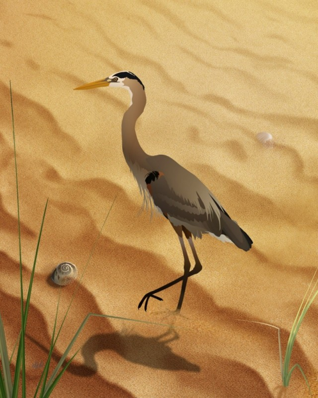 Heron On Golden Sands