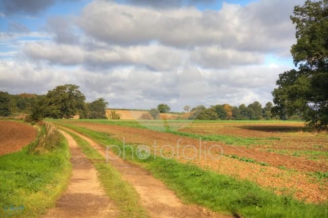 Castle Ashby Farm Track – Northamptonshire