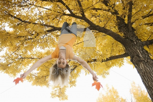 A girl hanging upside down from a tree branch, holding two large maple leaves in autumn.