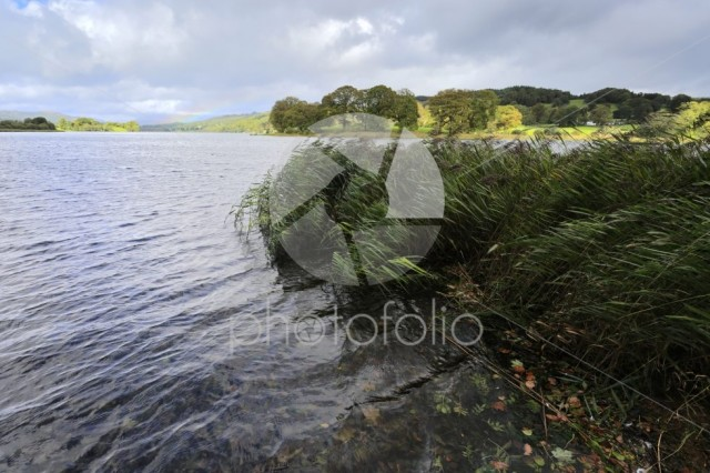Autumn view over Esthwaite Water, Lake District National Park