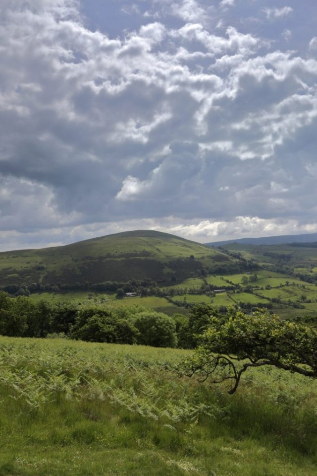 View of Little Mell Fell, Lake District National Park, Cumbria
