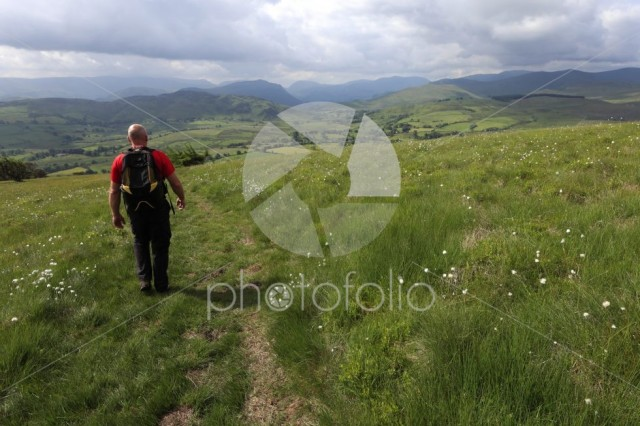 Walker in the Matterdale valley, Lake District National Park
