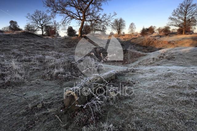Winter frosty dawn, Barnack Hills N Holes, SSSI, Barnack village