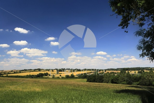 Summer landscape fields near Northleach town, Gloucestershire