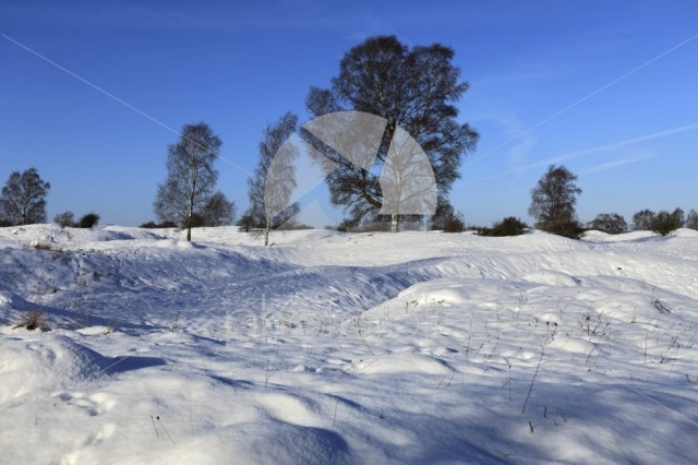 Winter snow at Barnack Hills N Holes, SSSI