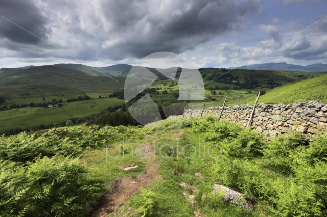 Summer view through the Matterdale valley, Lake District
