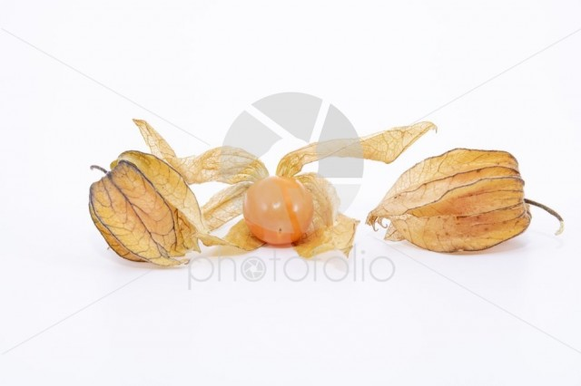 Golden berry (Physalis) isolated on white background