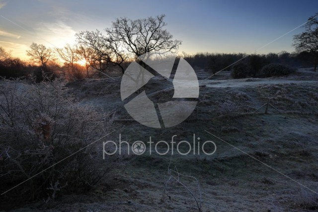 Winter frosty dawn, Barnack Hills N Holes, SSSI, Barnack village