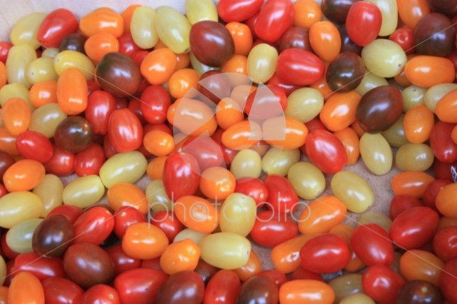 Small strange tomatoes. Red, burgundy, yellow and orange