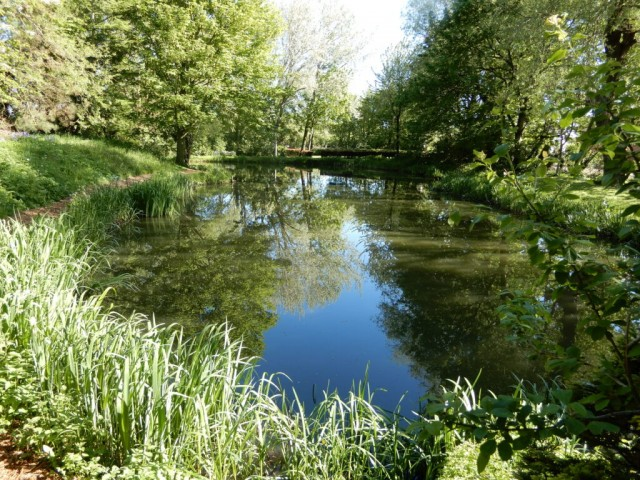 Lake in late spring