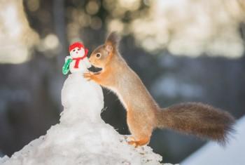 nursing snowman