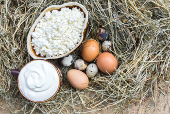 Rural cottage cheese, sour cream and various eggs on hay. View from above.