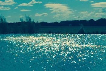 reflecting the sunshine