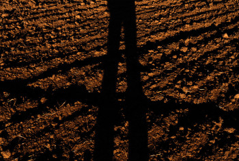 Tall shadow selfie on a ground background at sunset