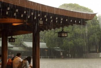Meiji Rain