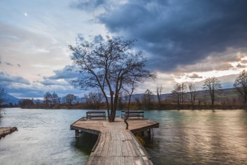 Tree and benches on a jetty by a river, cloudy sky.