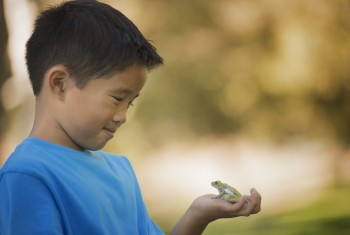 A boy holding a frog in the palm of his hand.