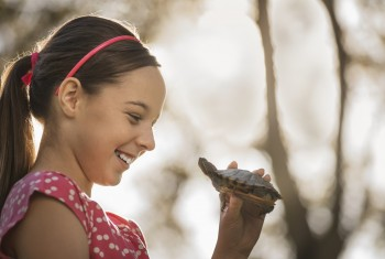 A girl holding a small turtle or terrapin.
