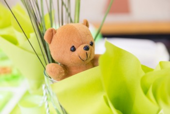 Teddy Bear in a Glass Cup with Green and White Birthday Decorati
